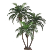 280cm Phoenix Palm Group with Metal Plate - no pot A164TX