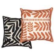 Tahira Cushion 50x50cm Assorted Colours AMCU 261