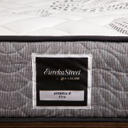 Queen  Avondale Firm Mattress EURAVFM