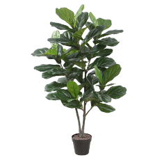 120cm fiddle leaf tree w/pot