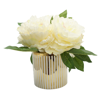 White peony in modern pot